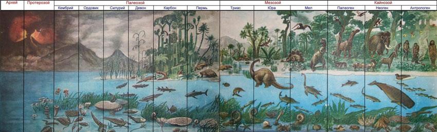 Основные периоды развития жизни на земле схема