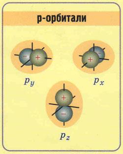 рисунок форма p-орбиталь